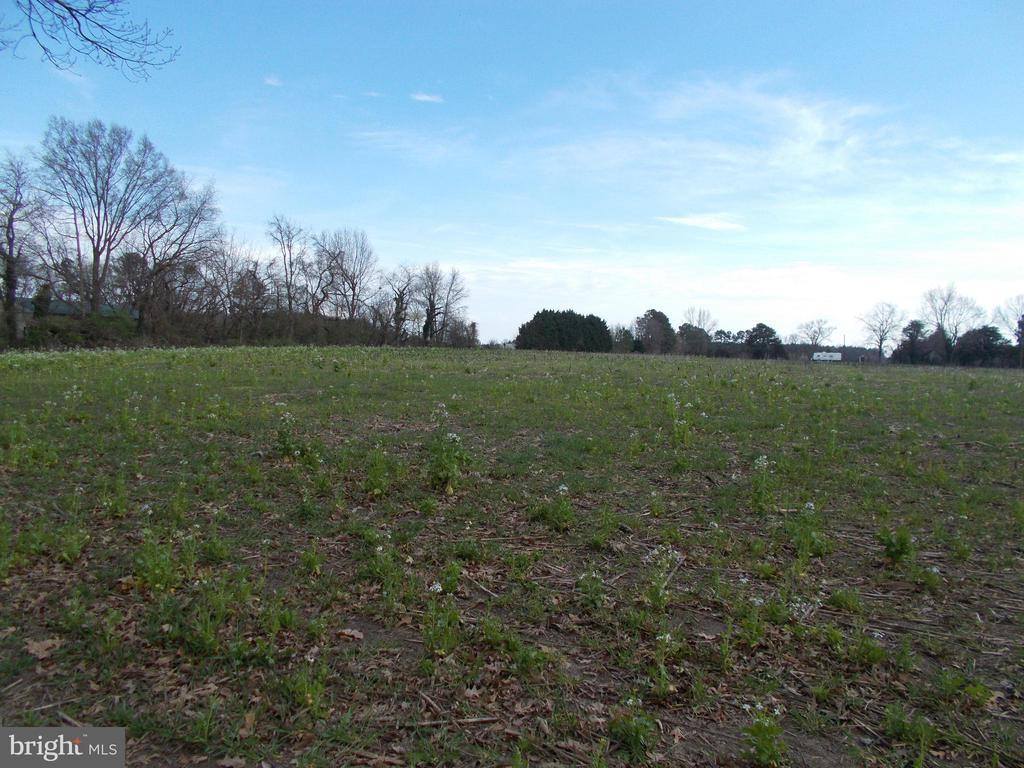 Beautiful, high lot in Warwick School District!  This lot offer views of Cabin Creek.  Approved perk test.  Right-of-way to property.