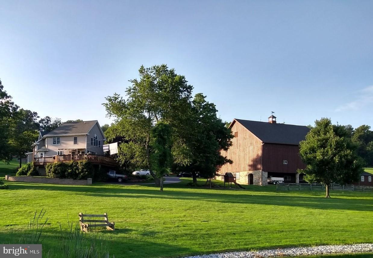 Yard- Lawn