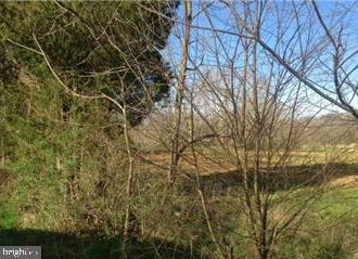Almost 6 acres along winding country road. Pasture and farm views.  Some restrictions.   Right next to an organic farm!