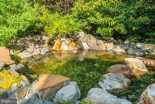9110 Dara Ln Great Falls VA 22066