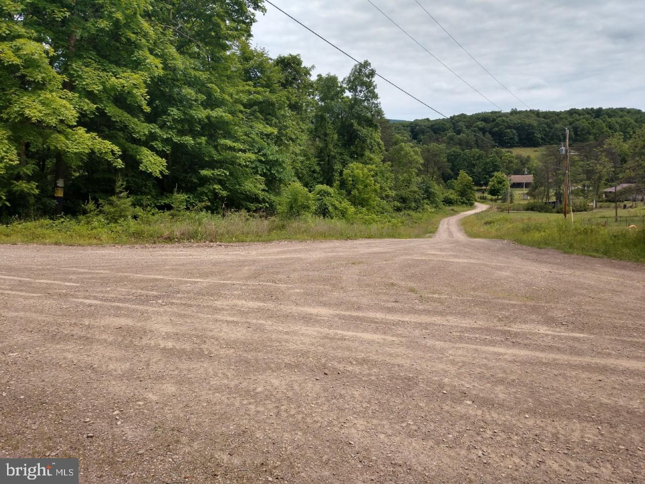 614 Scattered Acres Road, Mifflin, PA 17058