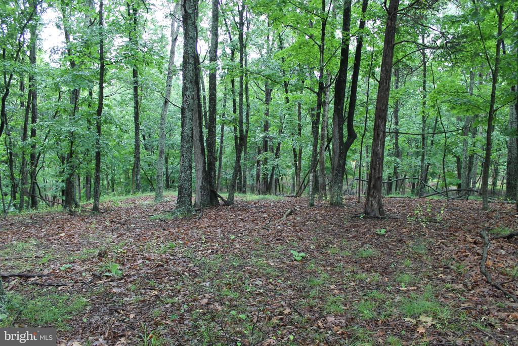 Lot 82 Crossings View Road, Paw Paw, WV 25434
