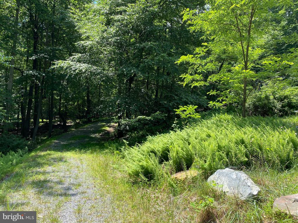 Where the wild ferns grow.  4.11 Wooded Acres adjoining Cacapon State Park and situated in Cacapon East Sub.   Driveway installed.   Paved road right to the lot.    Enjoy the hardwood trees, natural stone, wet weather stream and being at the end of the cul-de-sac.