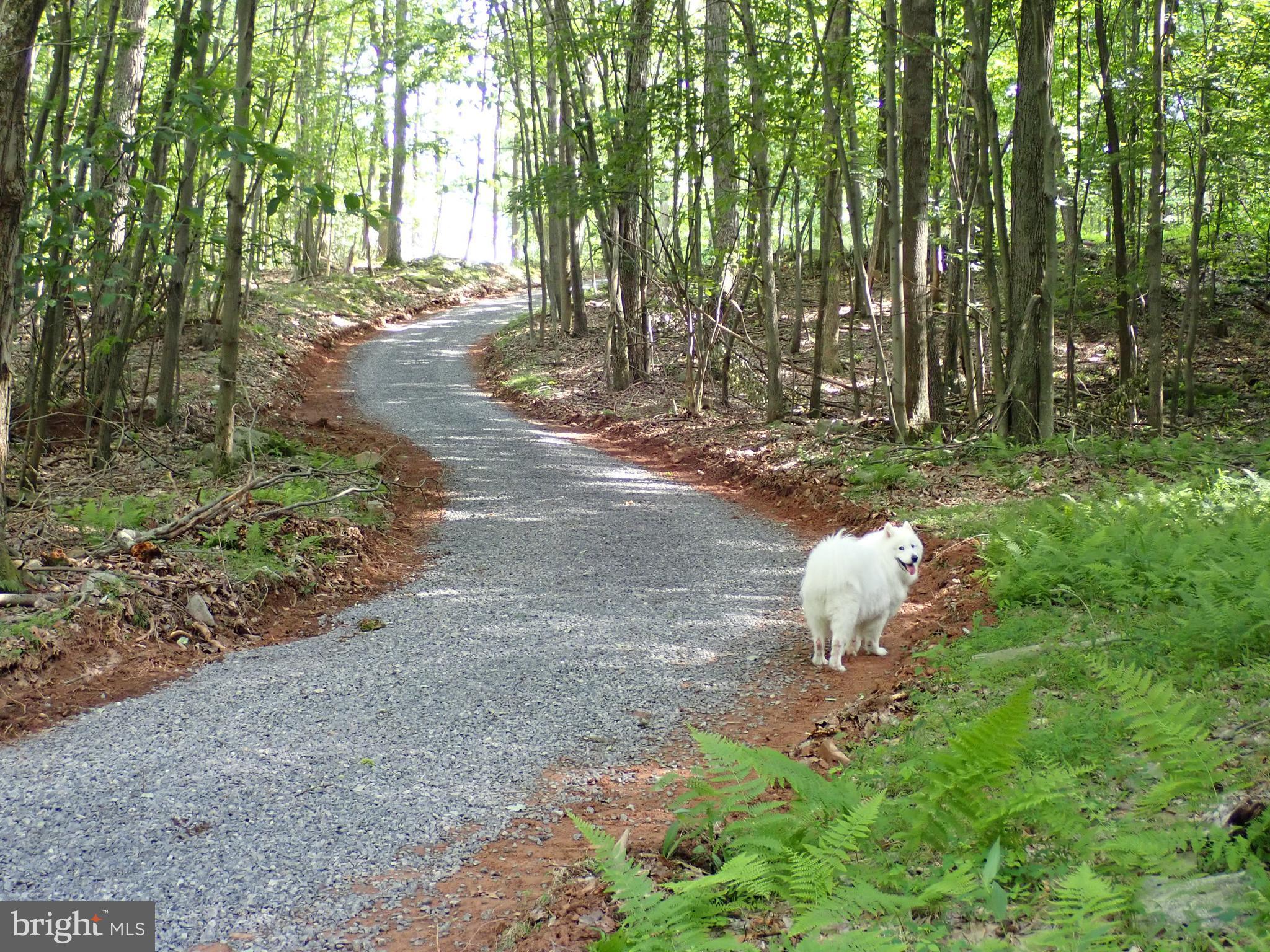 33 Preserve Road, Maysville, WV 26833