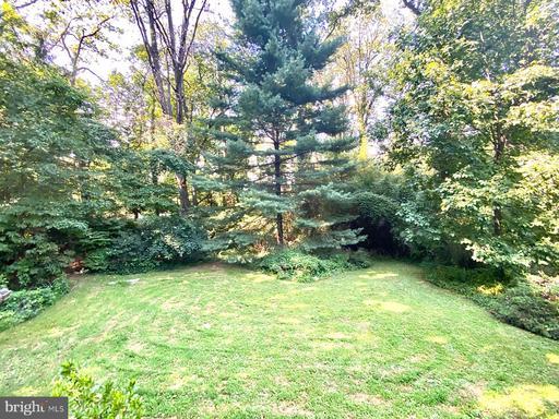 6834 Woodland Dr Falls Church VA 22046