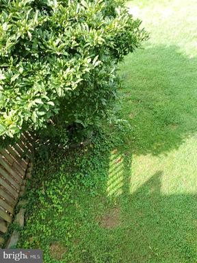 21236 Hedgerow Ter Ashburn VA 20147