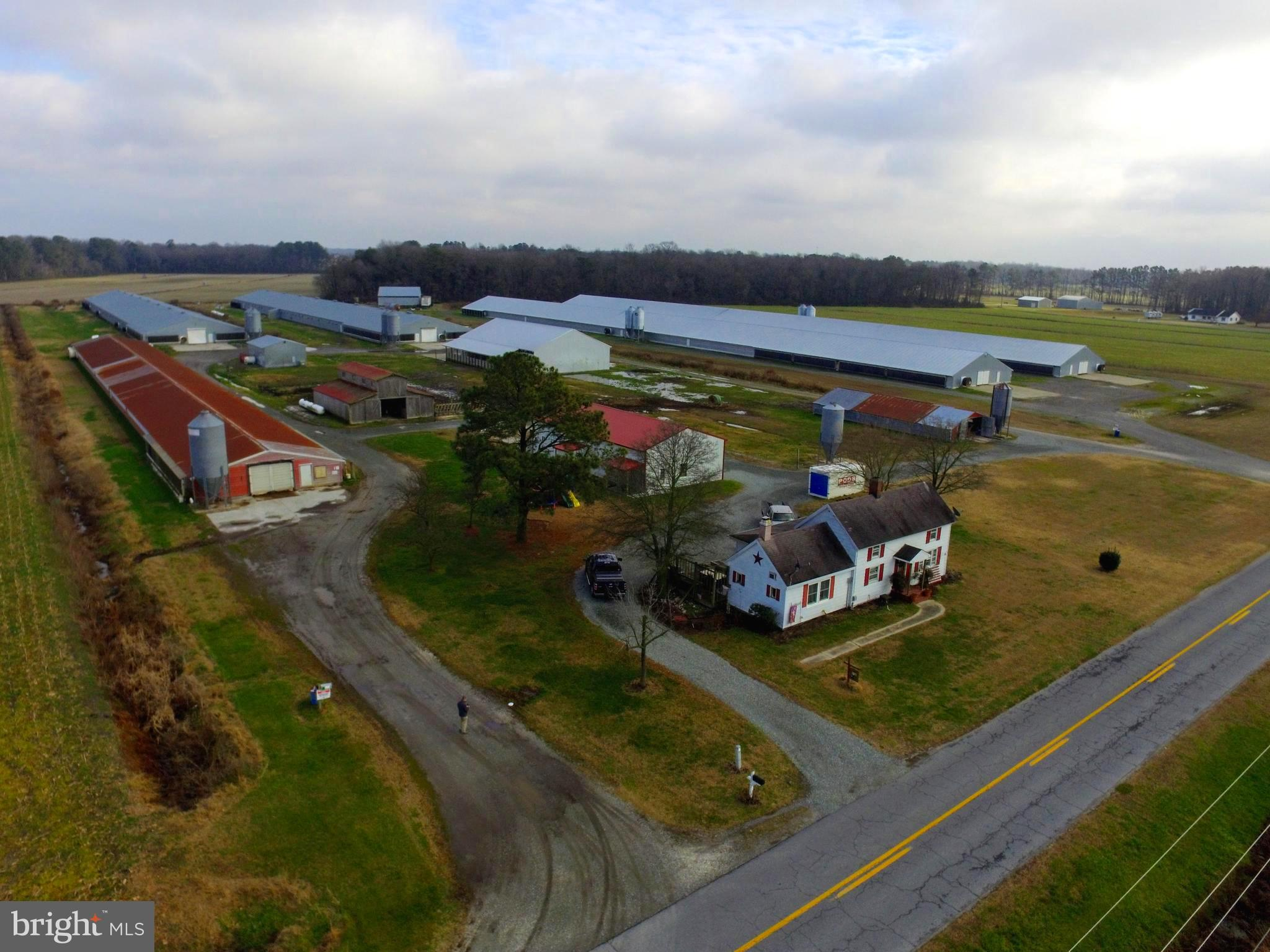 Established and fully operational poultry farm with home and multiple outbuildings. Farm consists of a total of 5 working poultry houses (1- 40x400; 2- 66x500; 2 60x600). The 2 - 66x500 houses were built around 2005 and the 2 - 60x600 were built around 2016.  Sellers have made recent upgrades to the poultry houses.  Property consists of a new manure shed with attached composter, an older manure shed at the back of the property which is currently being used for storage, 2 generator sheds each with generators, 1 horse barn with 6 stalls & loft, one large detached garage/shop with rest room, 4 wells, a 2 story farmhouse with 3 bedrooms and 1 bath. The 16.73 acres are made up of 2 parcels (9.196 acres with farmhouse and 7.53 acres with the 2 newer poultry houses). Please call for more information or to make arrangements to schedule a showing of this property. Showings are by approved scheduled appointments only. Do NOT Drive onto property without approved appointment.