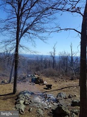 19688 Blueridge Mountain Rd Bluemont VA 20135