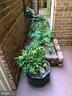 1359 Garden Wall Cir #704