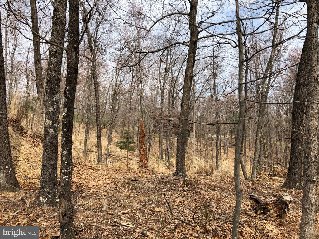 .90 Acre with Septic Permit Approved -   A place to camp until you're ready to build.   Close to Cacapon State Park where you can enjoy all the amenities.