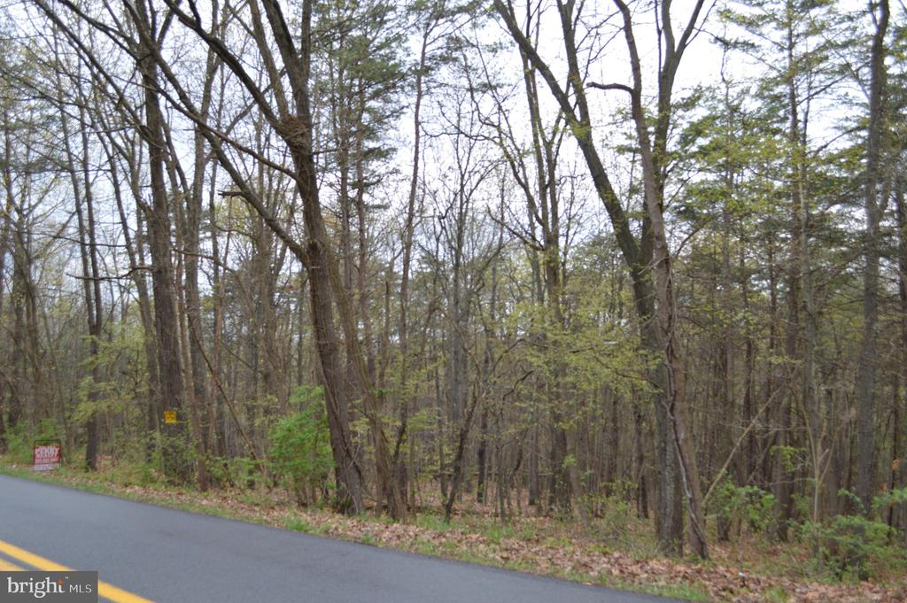 Great Building Lot on the North end of Berkeley Springs.   Make your entrance right off of Pious Ridge Road.   2 wooded acres.   Possible doublewide/mobile home location.  Protective Restrictions.
