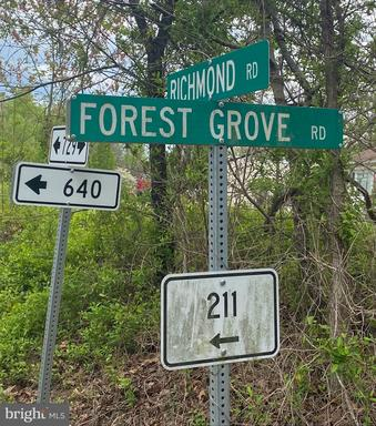 Forest Grove Rd Amissville VA 20106