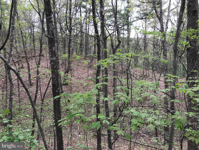 0 Basswood Lane   - Mount Jackson, Virginia 22842
