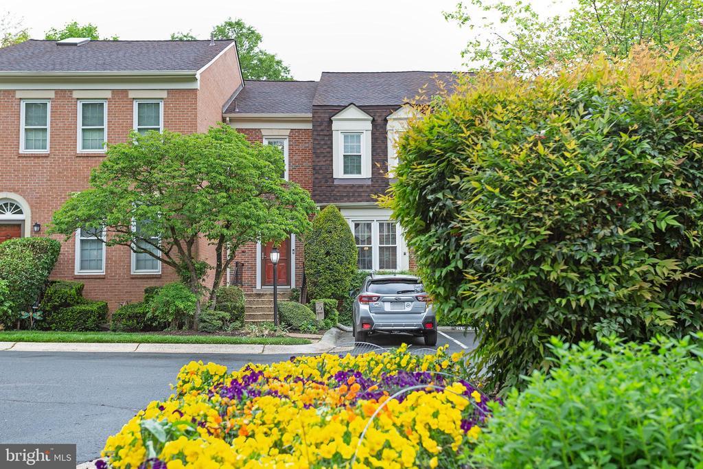 Photo of 3 Montague St.