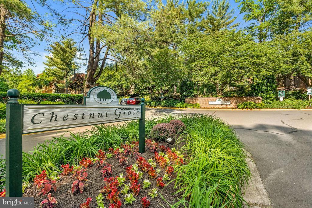 11252 Chestnut Grove Sq #11252-146, Reston, VA 20190