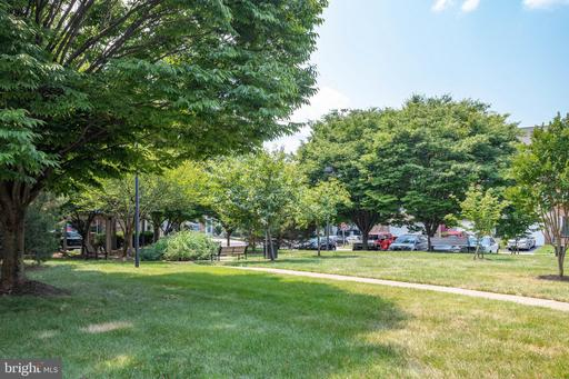 13940 Sawteeth Way Centreville VA 20121