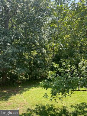 14548 Creek Branch Ct Centreville VA 20120