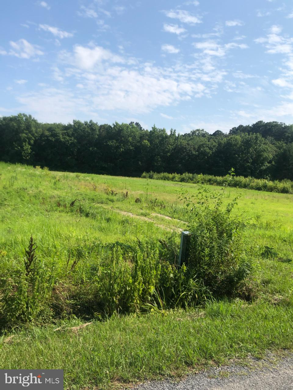 Perced approved building lot with 9.71+/- acres.  Zoned residential, Possibility of subdivision and could possibly be re-zoned to commercial.  Buyer to verify.